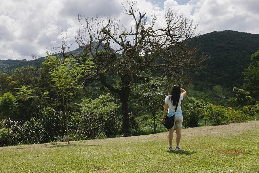 Minas-Site093.jpg