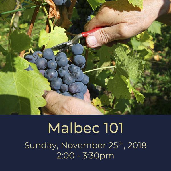 Malbec101-11.25.18.jpg