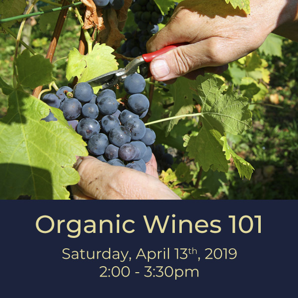 Organic-4.13.19.jpg