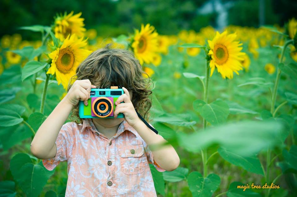 brian in sunflowers.jpg