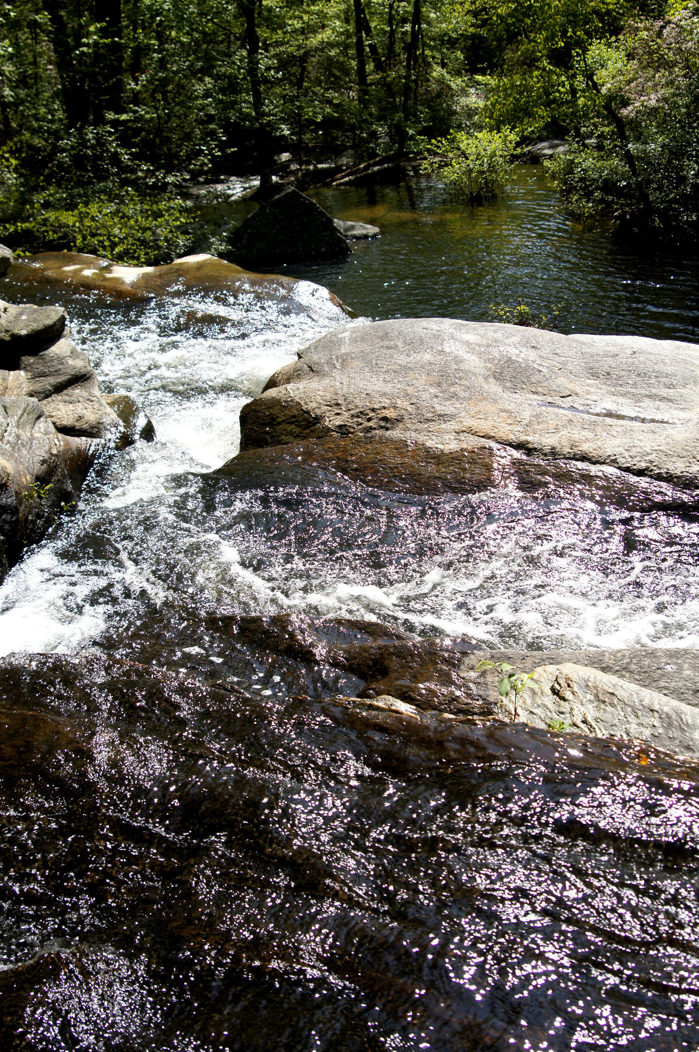 Devils Den waterfall and swimming hole