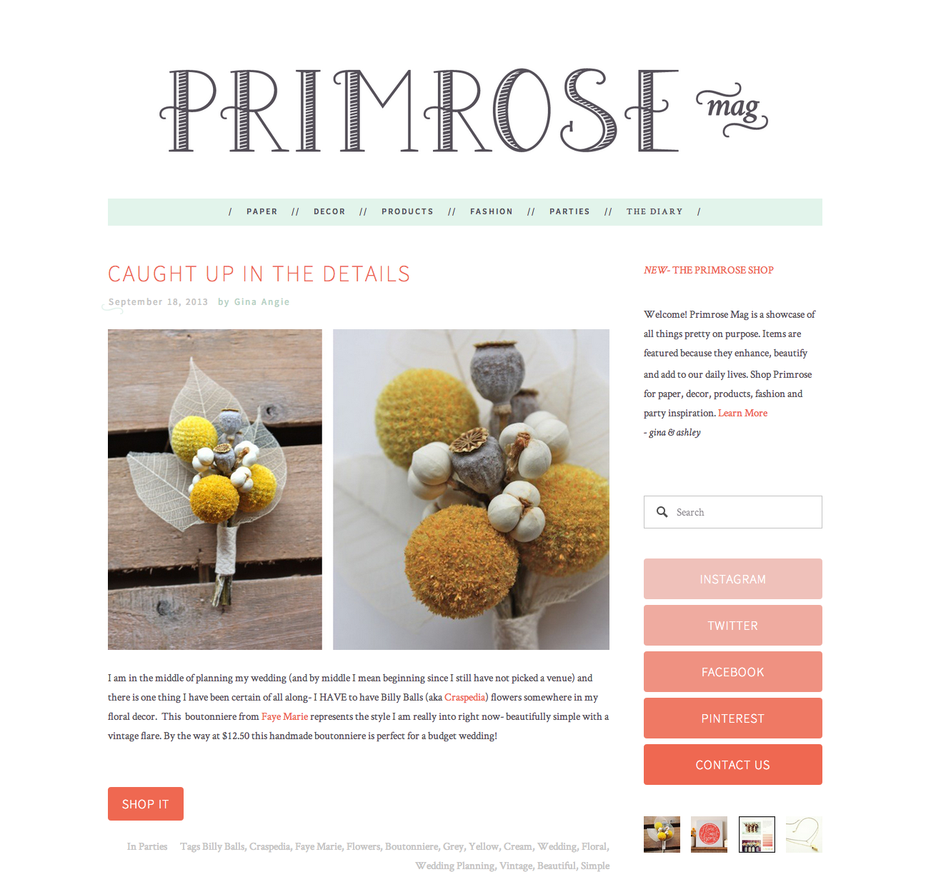 Caught up in the details — Primrose Mag.png