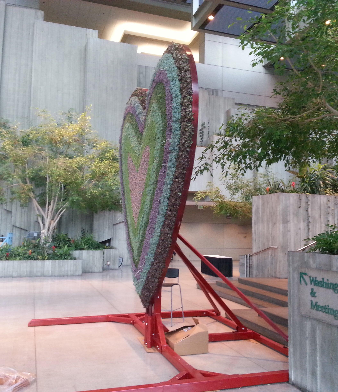 Living Succulent Heart sculpture