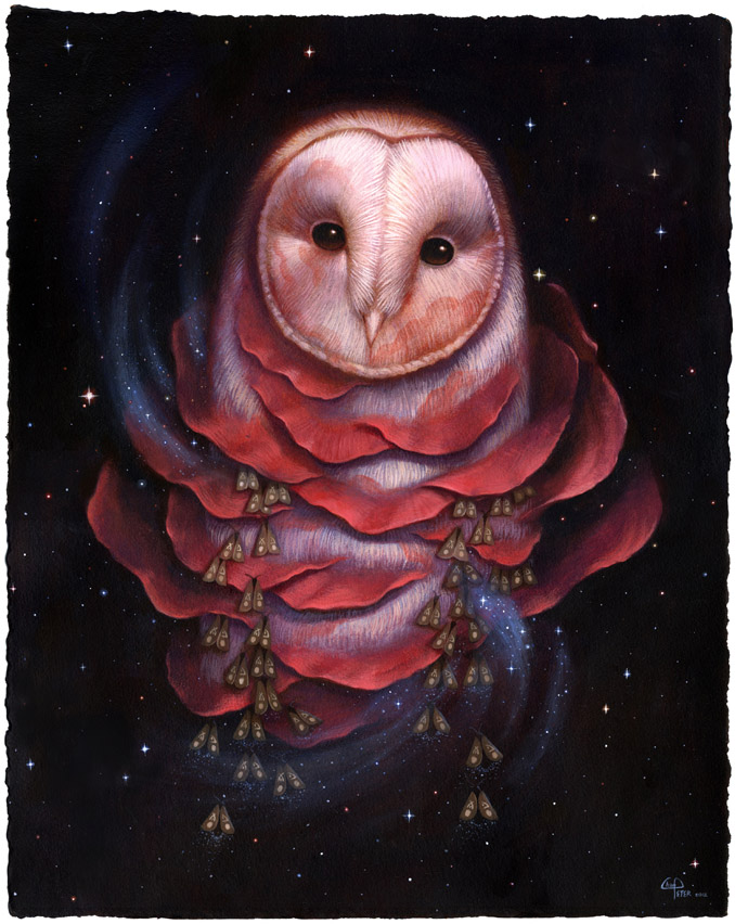 Nocturnal Enlightenment