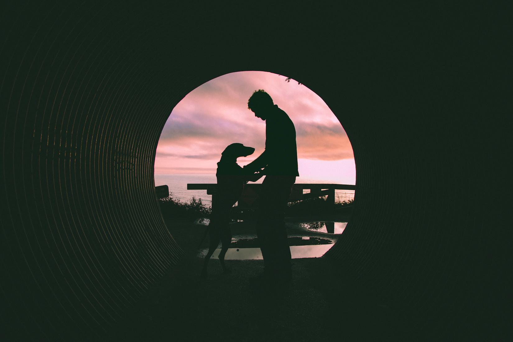 Big Sur-53.JPG