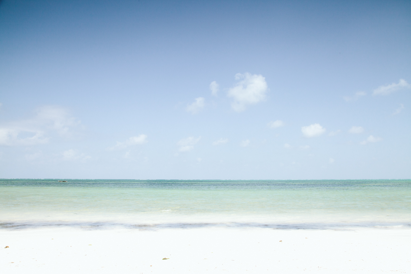 Zanzibar by Paige Jones