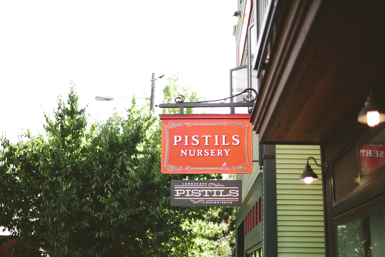 Pistils by Paige Jones