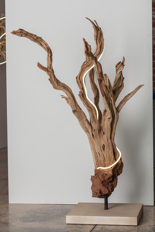 Untitled  (wood/neon series 2)