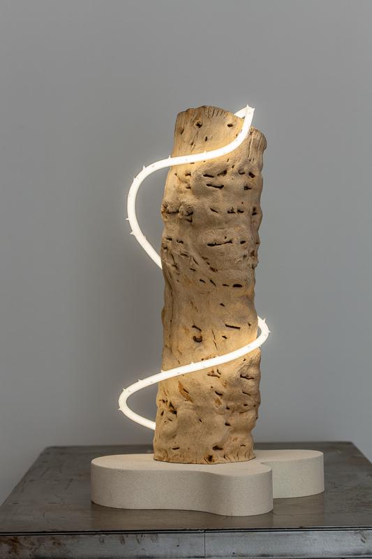 Untitled (wood/neon series 3)