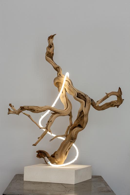 Untitled  (wood/neon series 4)