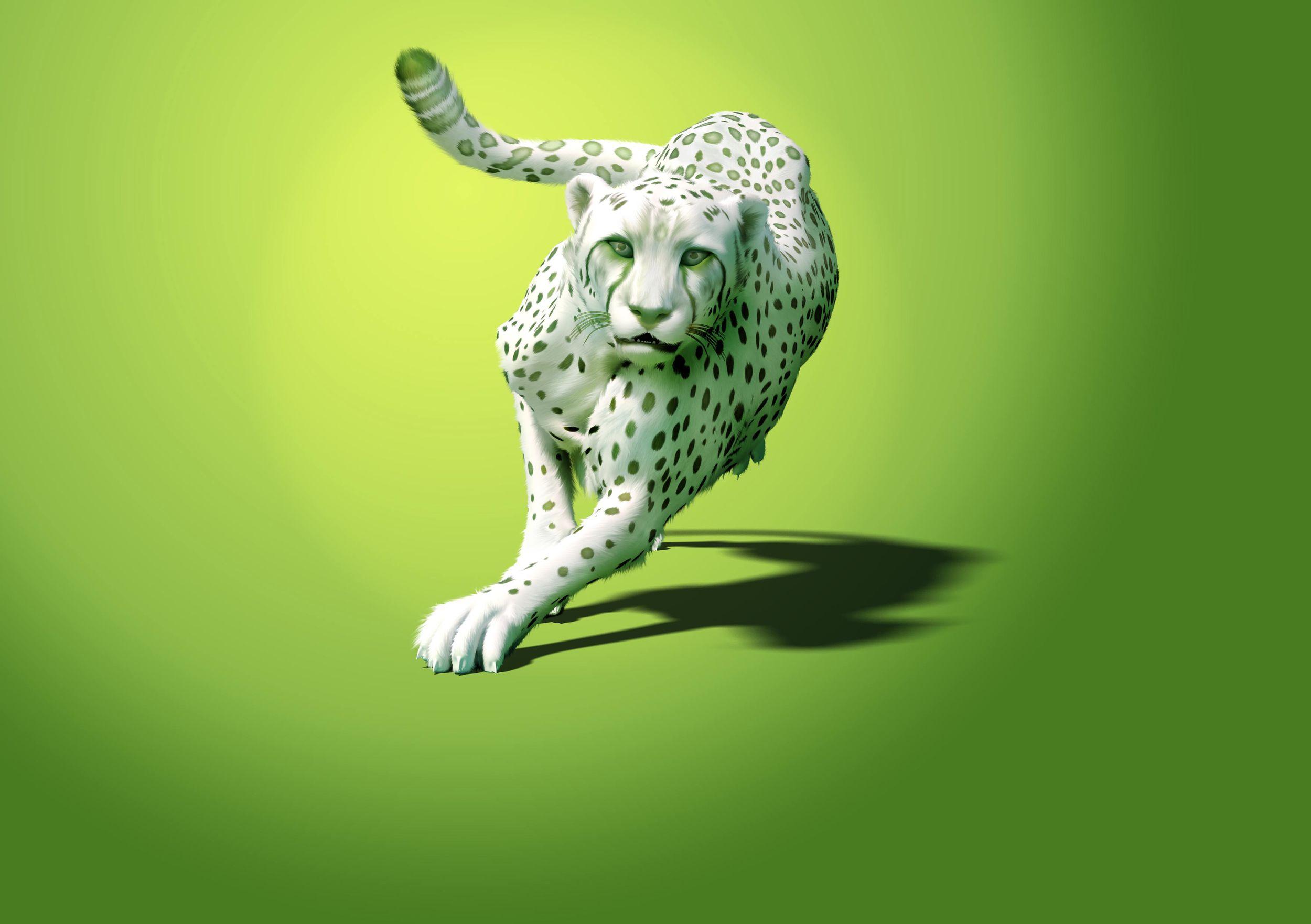 Cheetah_HR_TEST_v12_final_small.jpg