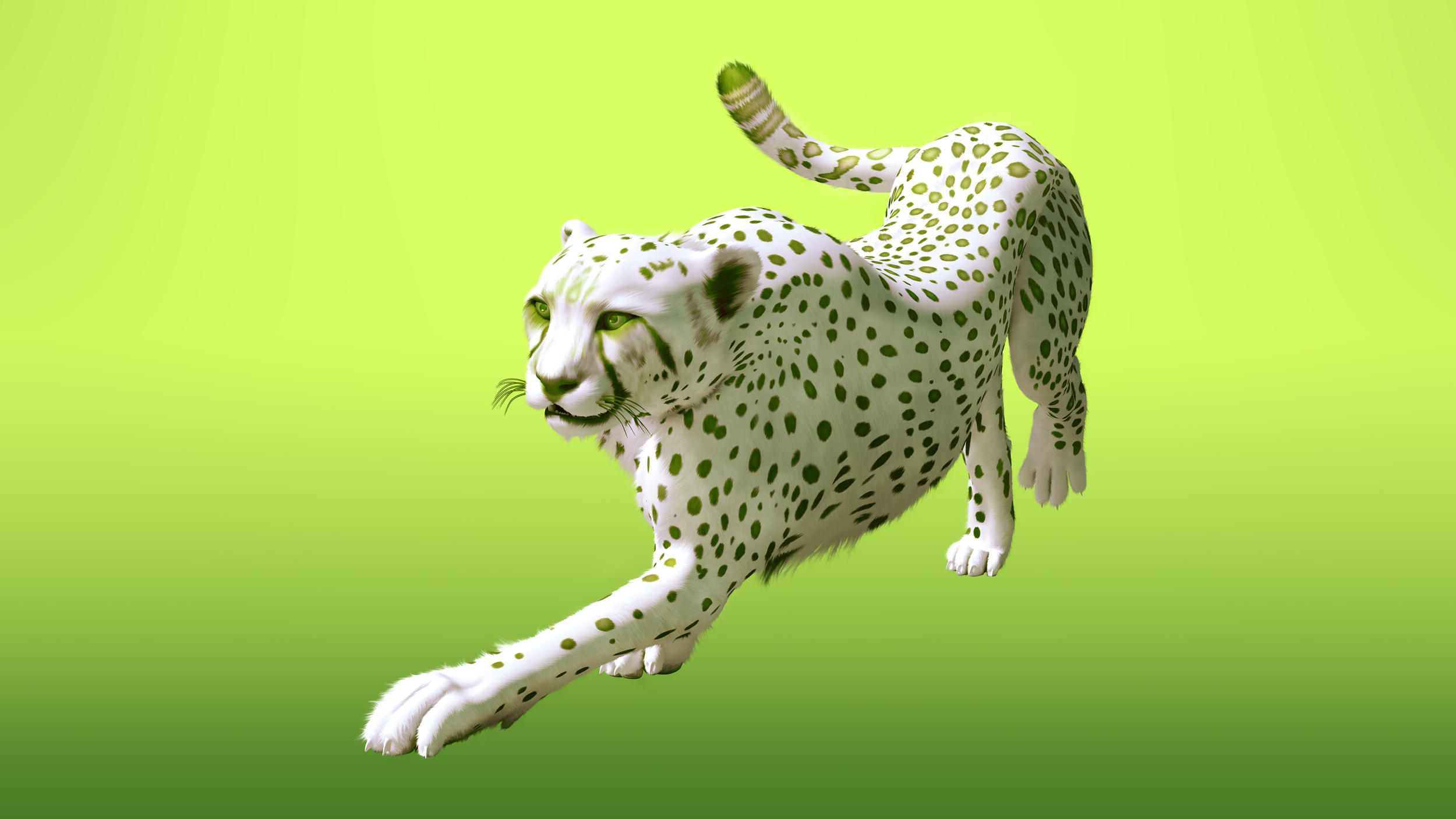 Cheetah2_v04_small.jpg