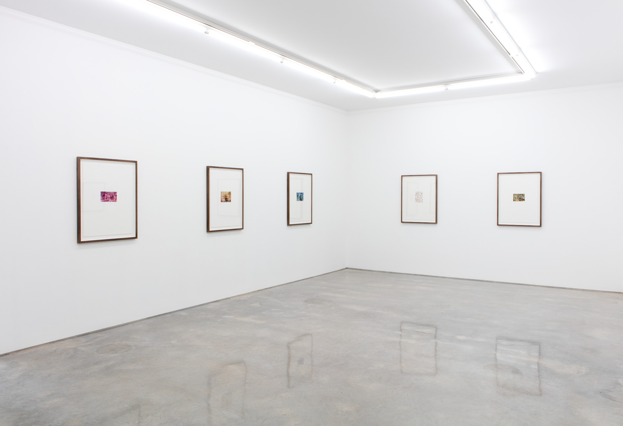 Trial Paintings, installation view, Sarah Cottier Gallery, Sydney.
