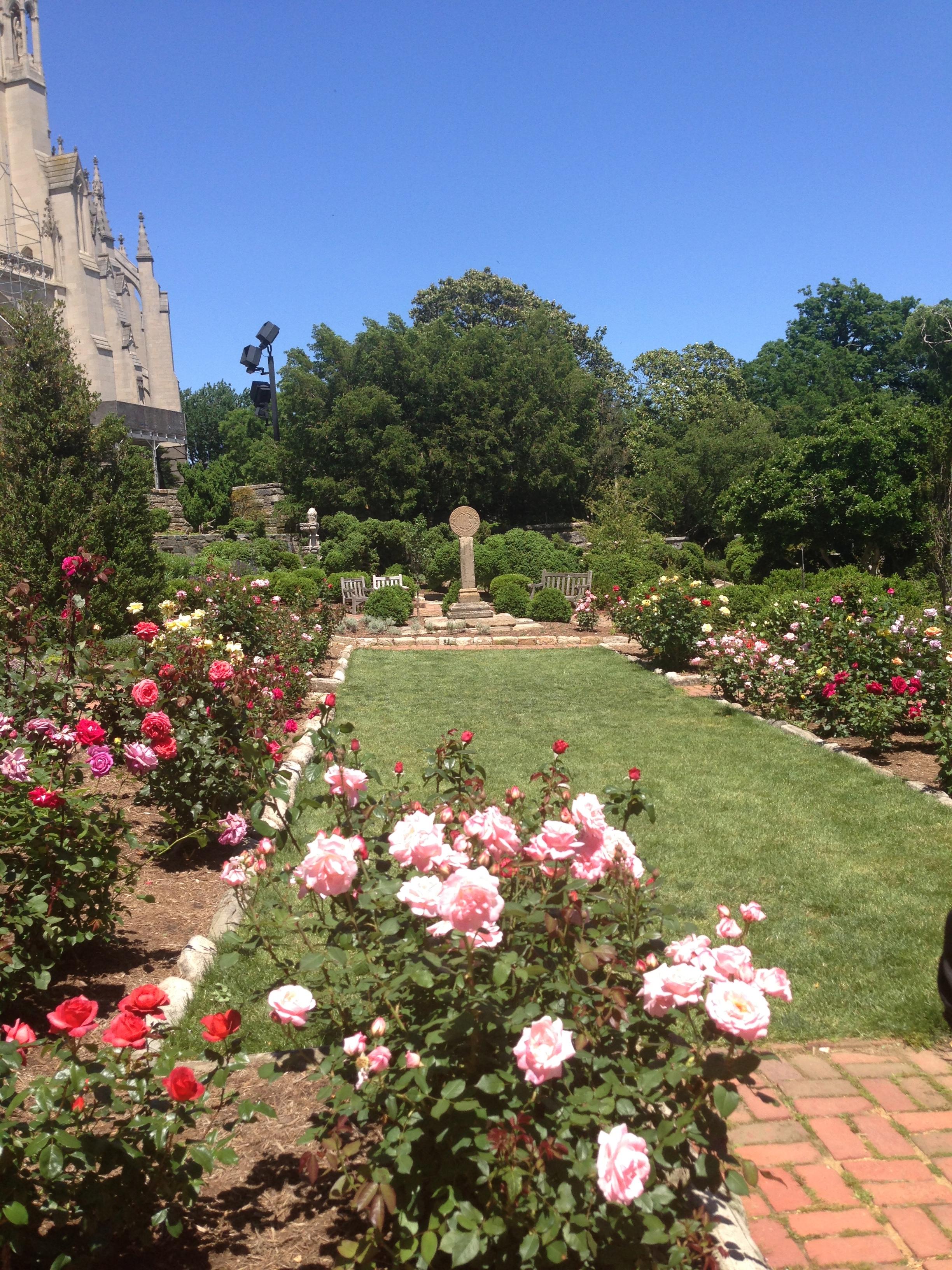 Cathedral Bishop's Garden
