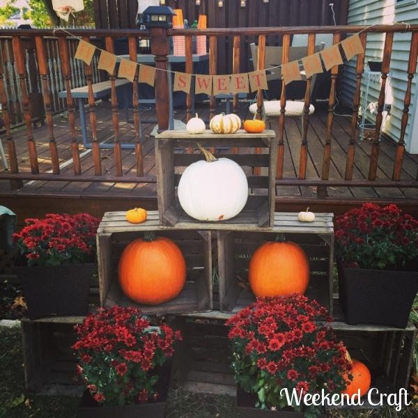 Fall pumpkin and mum display