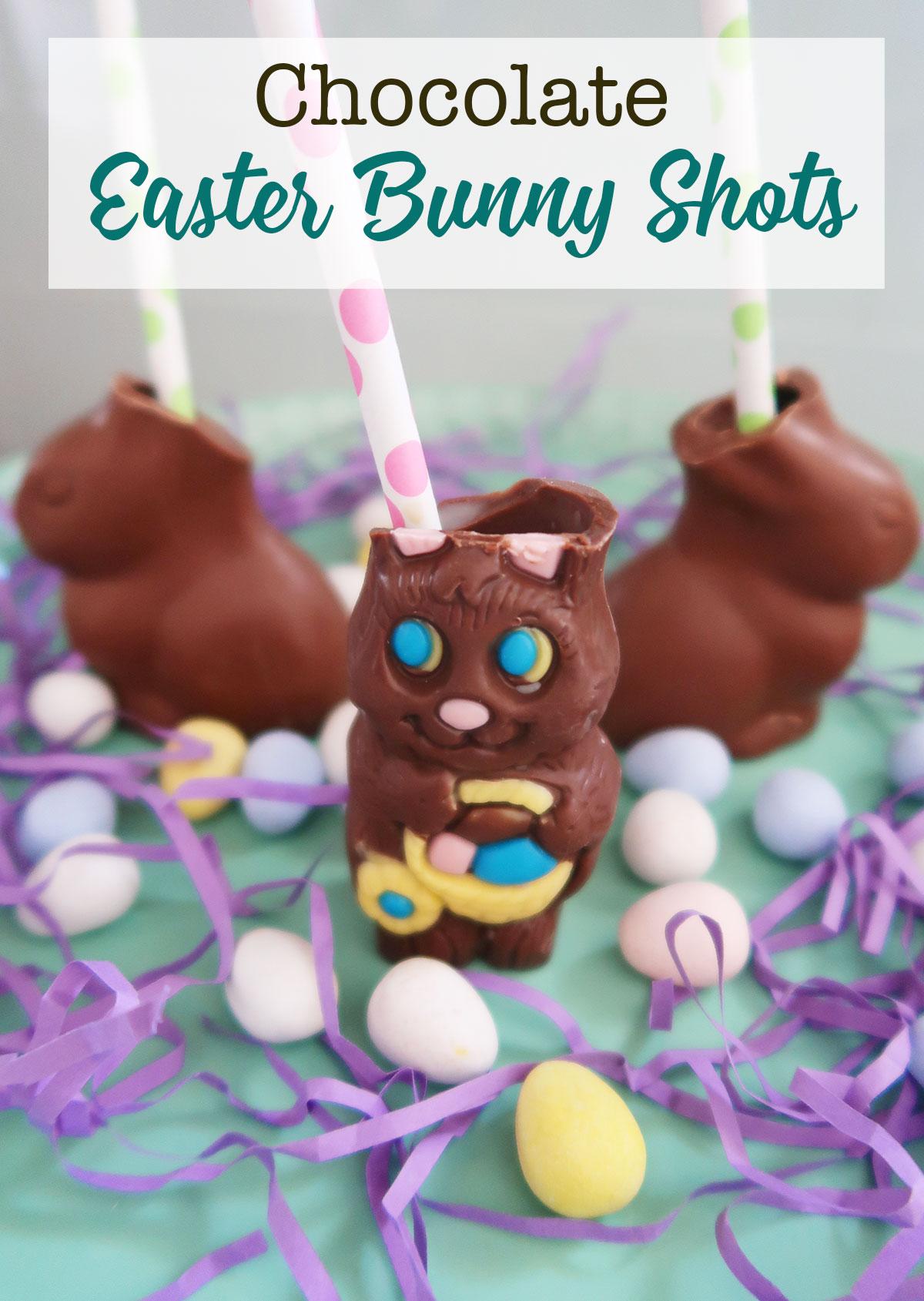 Chocolate-easter-bunny-shot.jpg