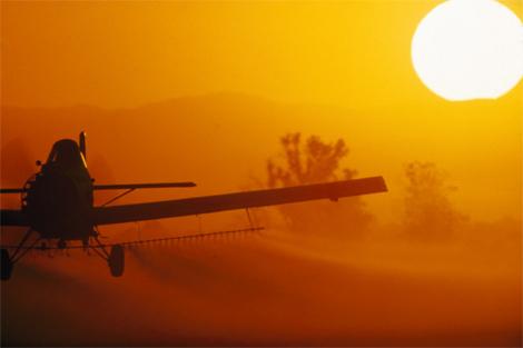 crop-dustinga.jpg