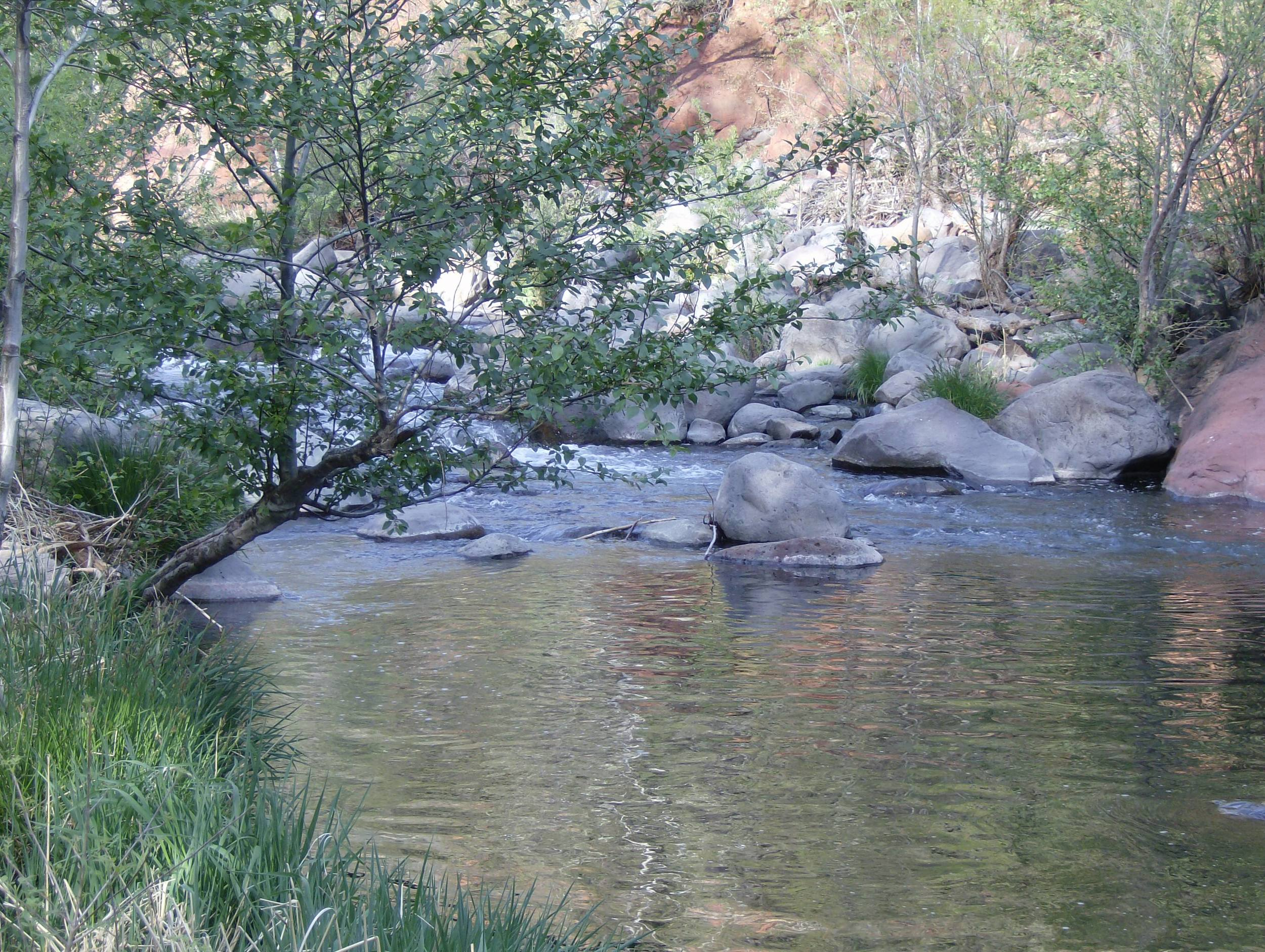 Sedona creek.jpg
