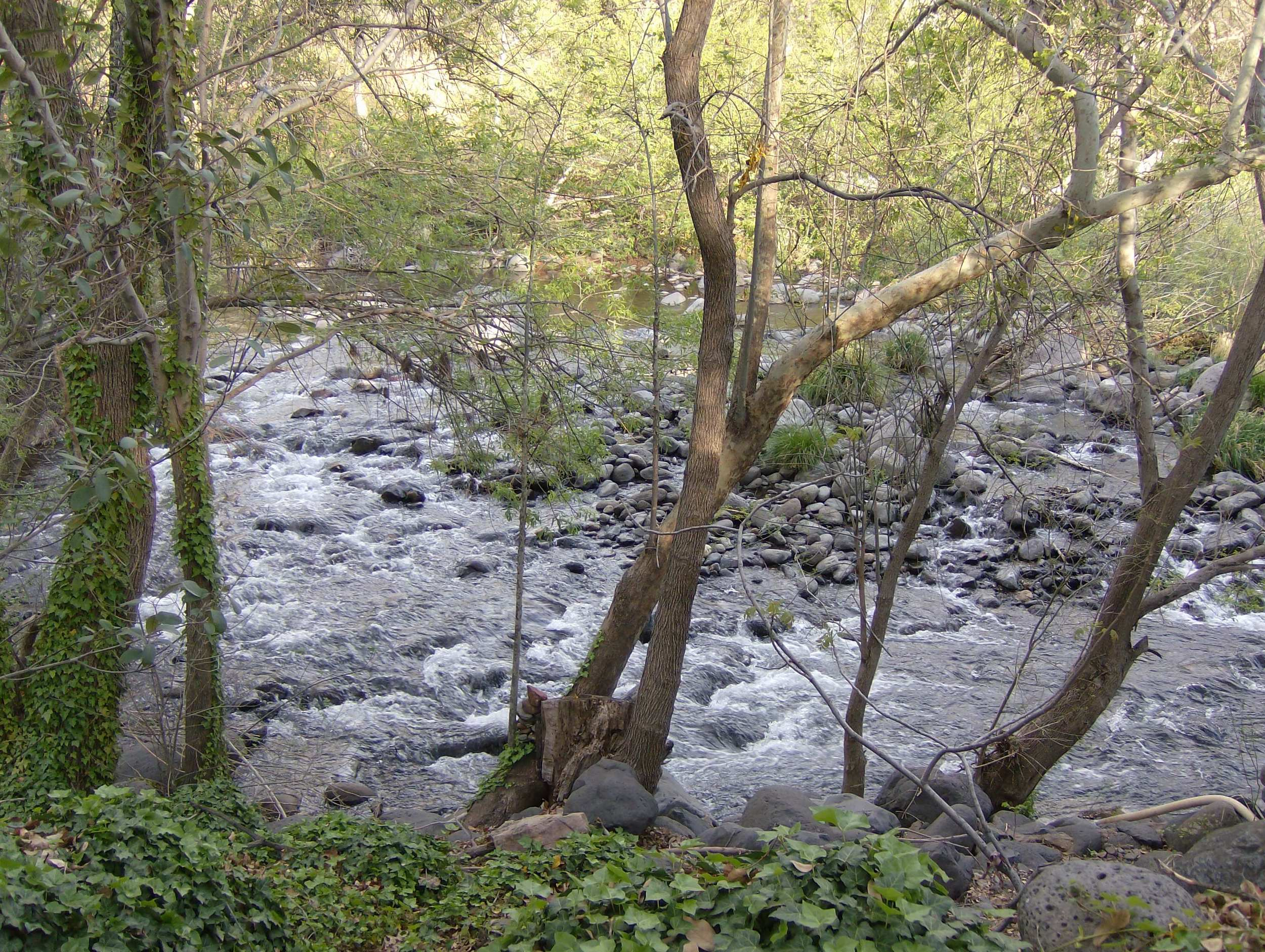 oak creek canyon.jpg