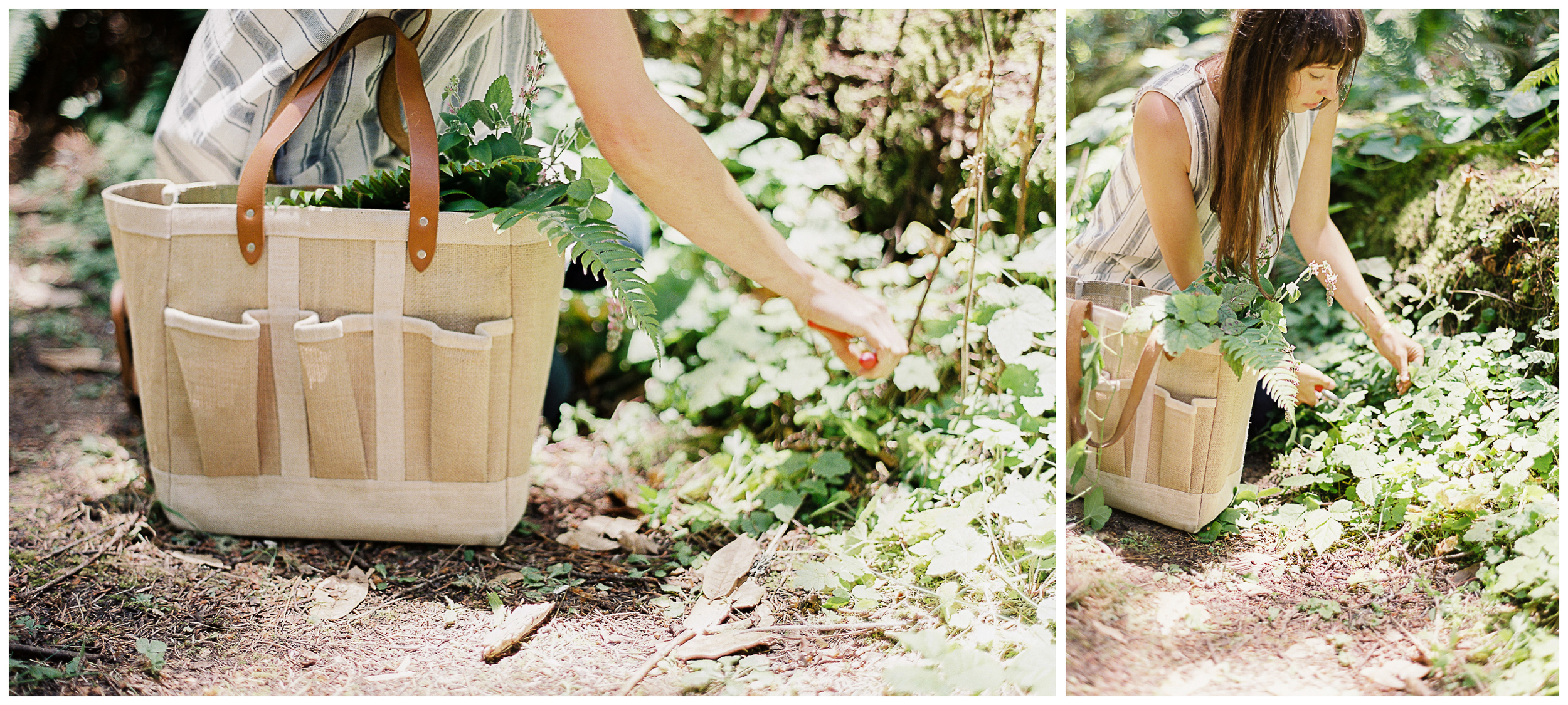 Meghan Mehan Fine Art Film Photography | San Francisco | Napa | Sonoma - blog layout 2up2.jpg