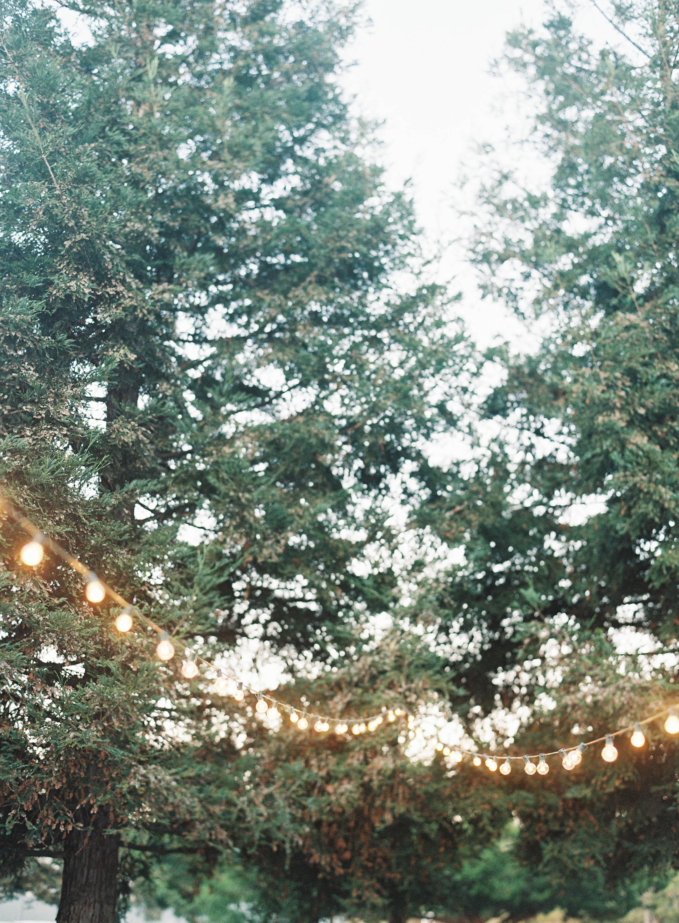 Meghan Mehan Photography - Fine Art Film Photography - Nashville | San Francisco | Napa | Sonoma | Big Sur | Carmel | Tennessee 146.jpg