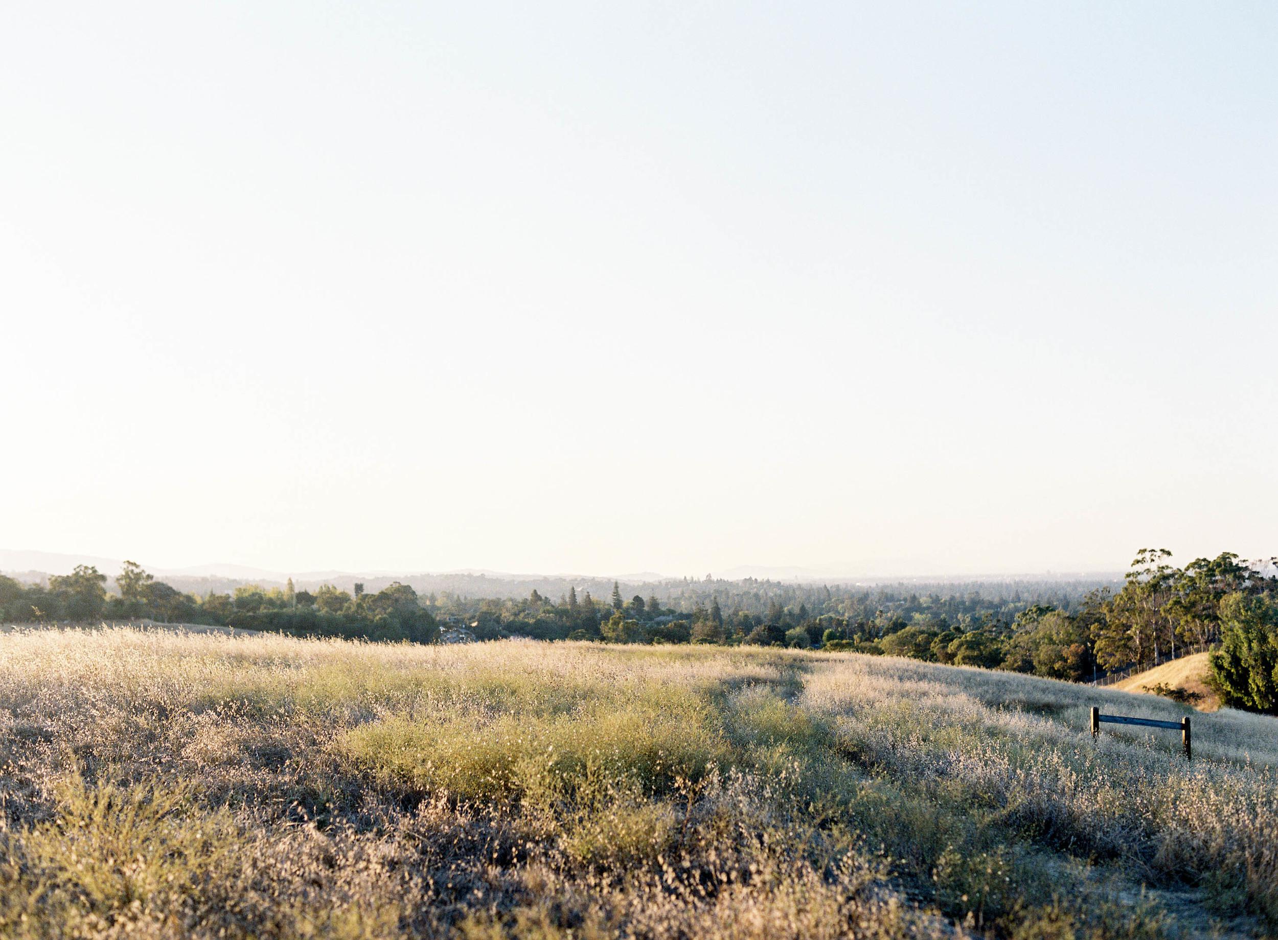 Meghan Mehan Photography - Fine Art Film Wedding Photography - San Francisco   Napa   Sonoma   Big Sur   Chicago   Minneapolis   Milwaukee   Lake Geneva   Door County   Wisconsin 007.jpg