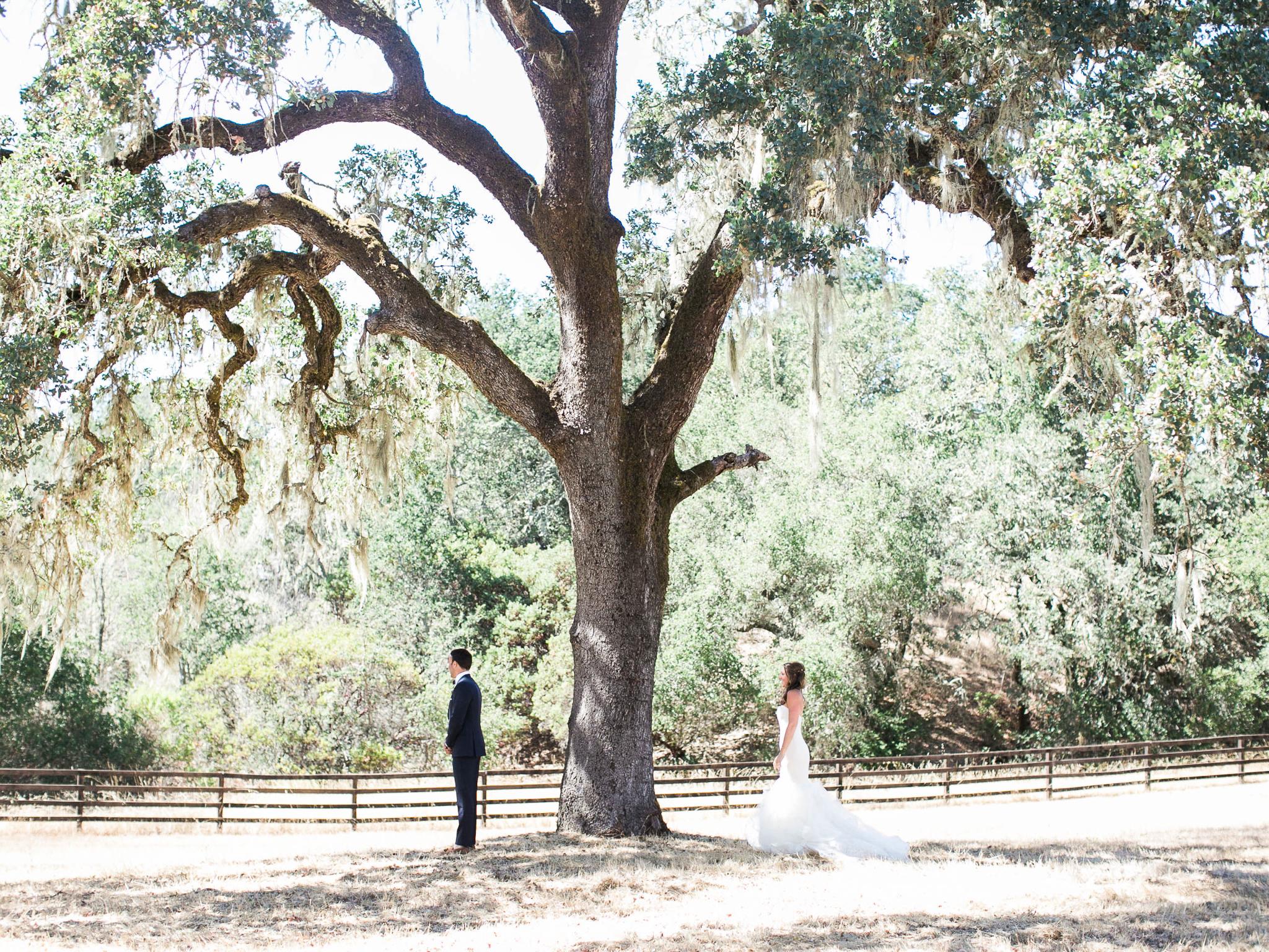 Meghan Mehan Photography - Fine Art Film Wedding Photography - San Francisco   Napa   Sonoma   Big Sur   Chicago   Minneapolis   Milwaukee   Lake Geneva   Door County   Wisconsin 009.jpg