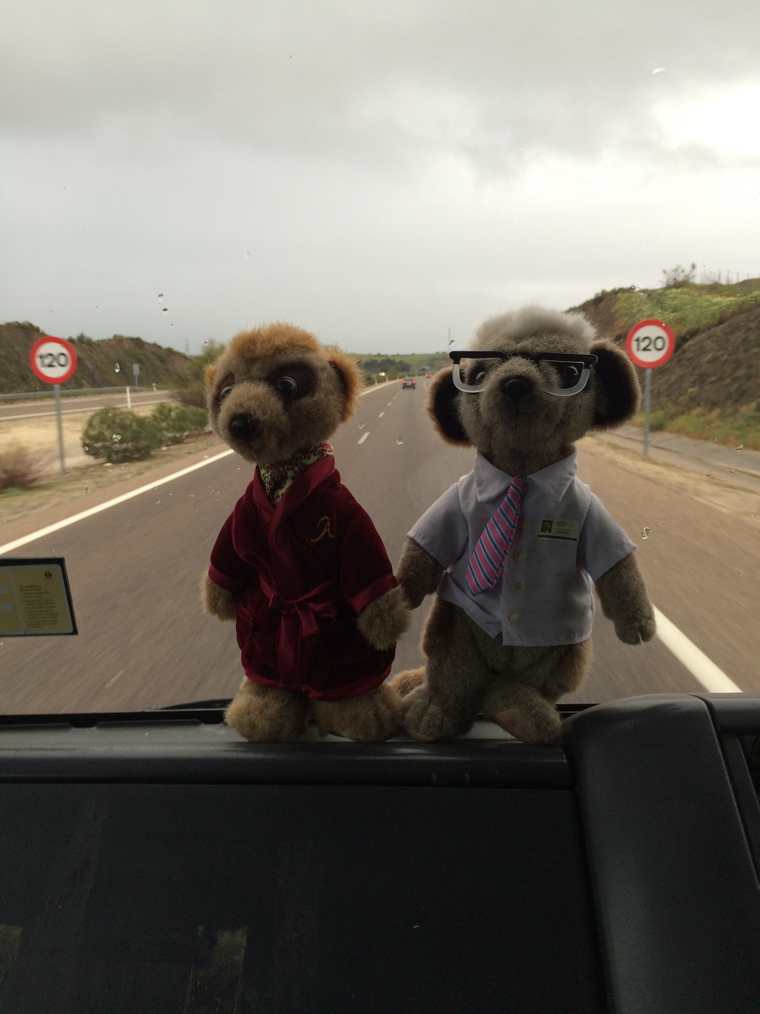 Aleksander and Sergei heading home