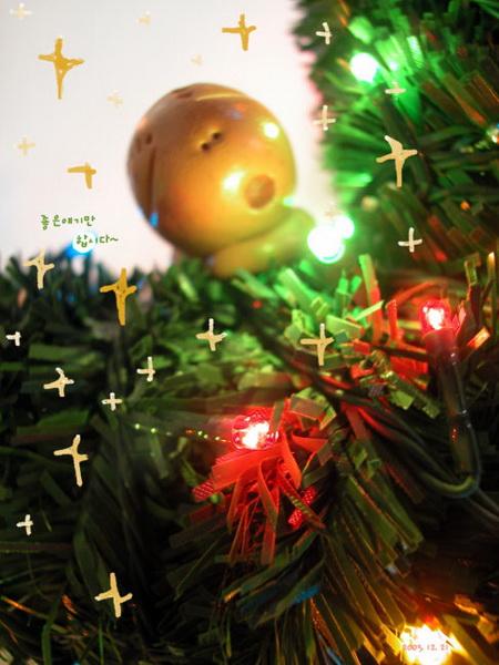 2005.12.21_resize.jpg