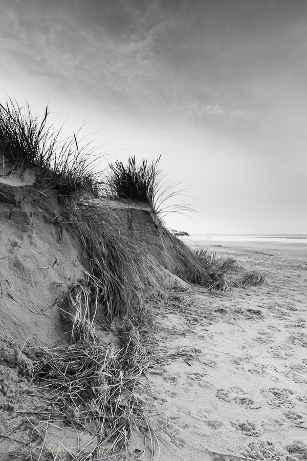 10-Black and white dunes.jpg