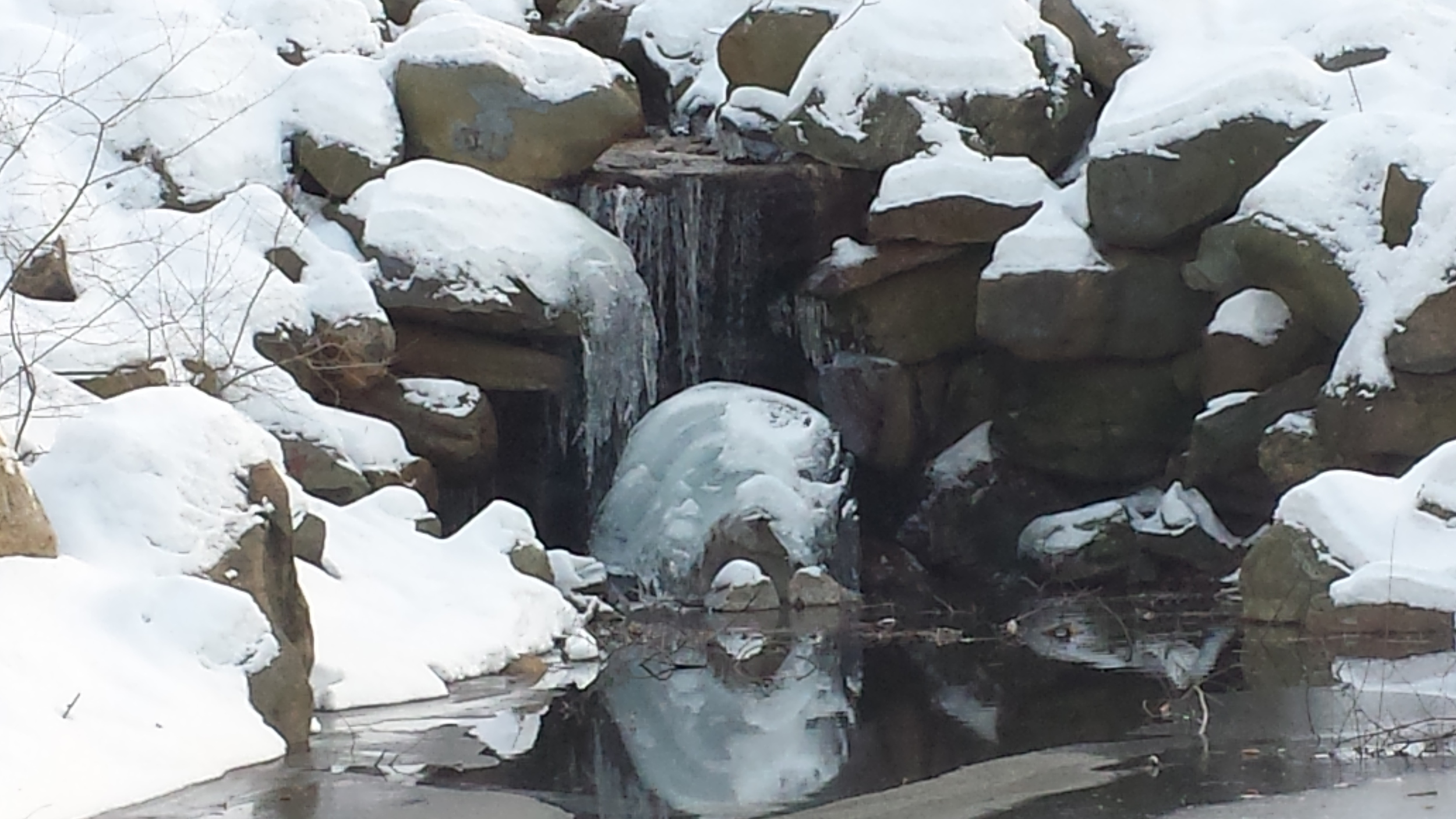 A Frozen Waterfall in Prospect Park.