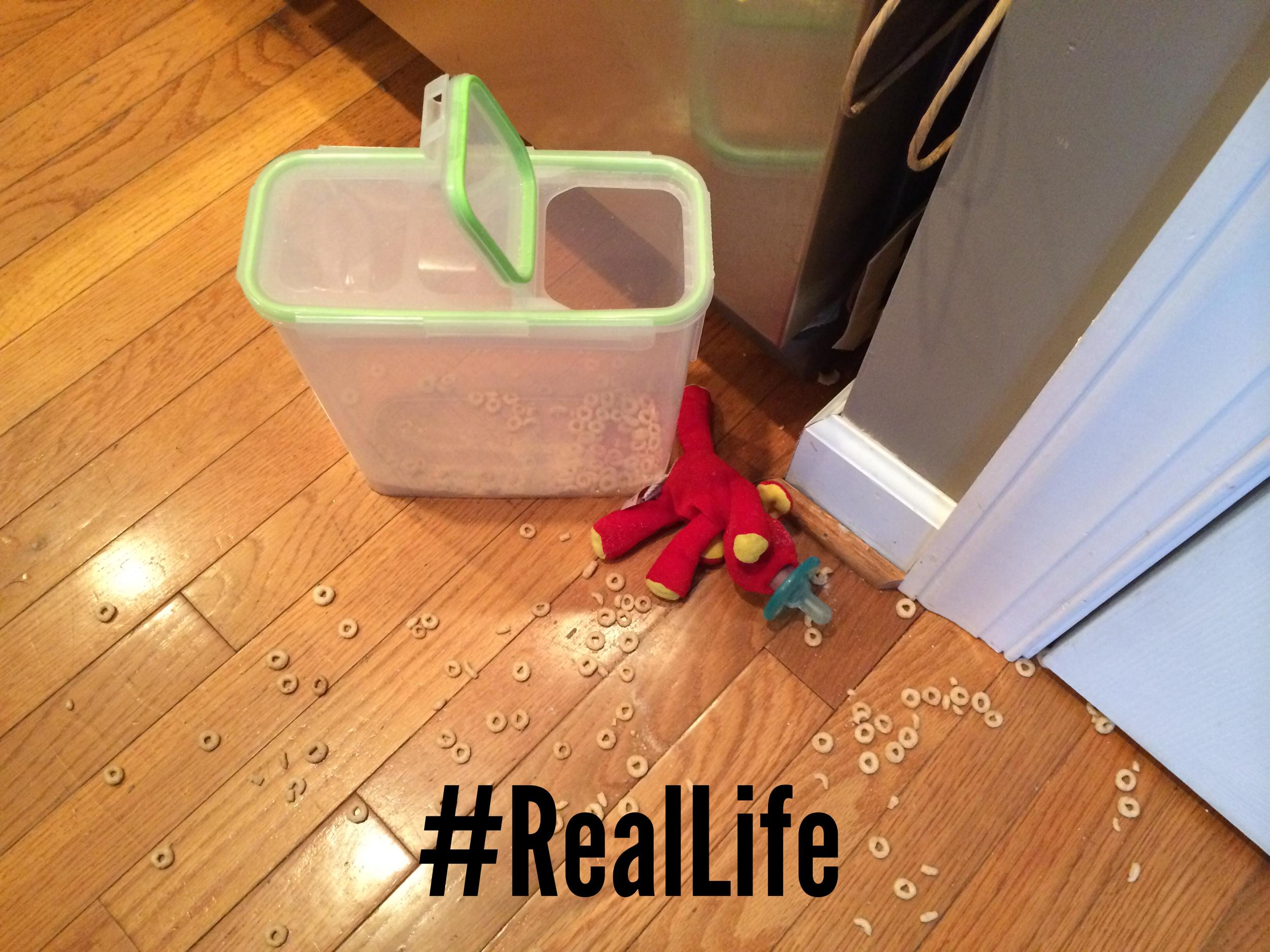 RealLife Cheerios