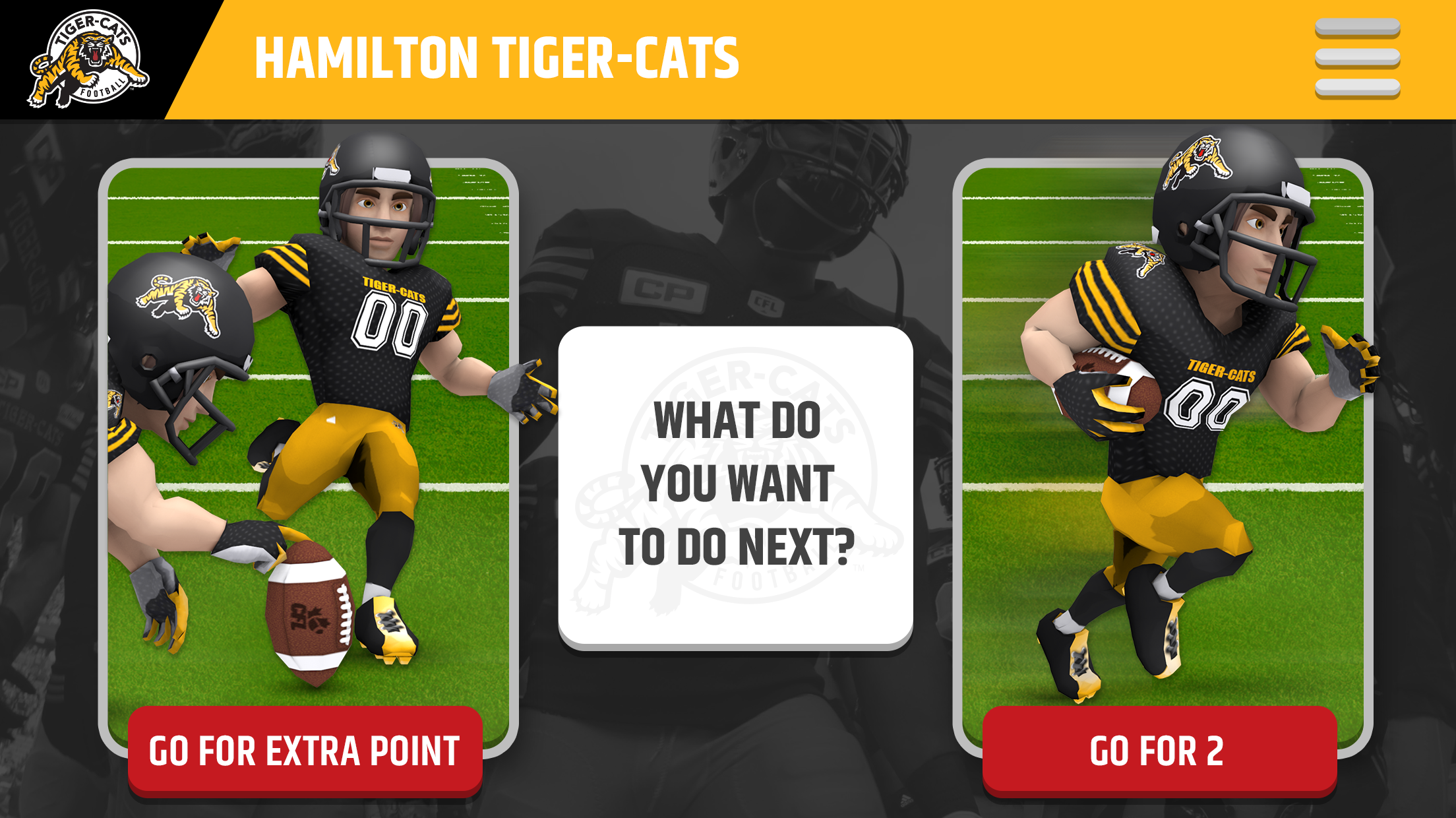 23_TigerCats__whatsNext.png