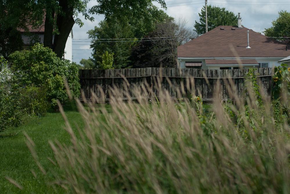 backyard_fence_01C.jpg