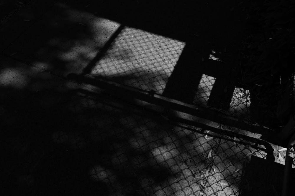 shadows_june_3_2018_01.jpg