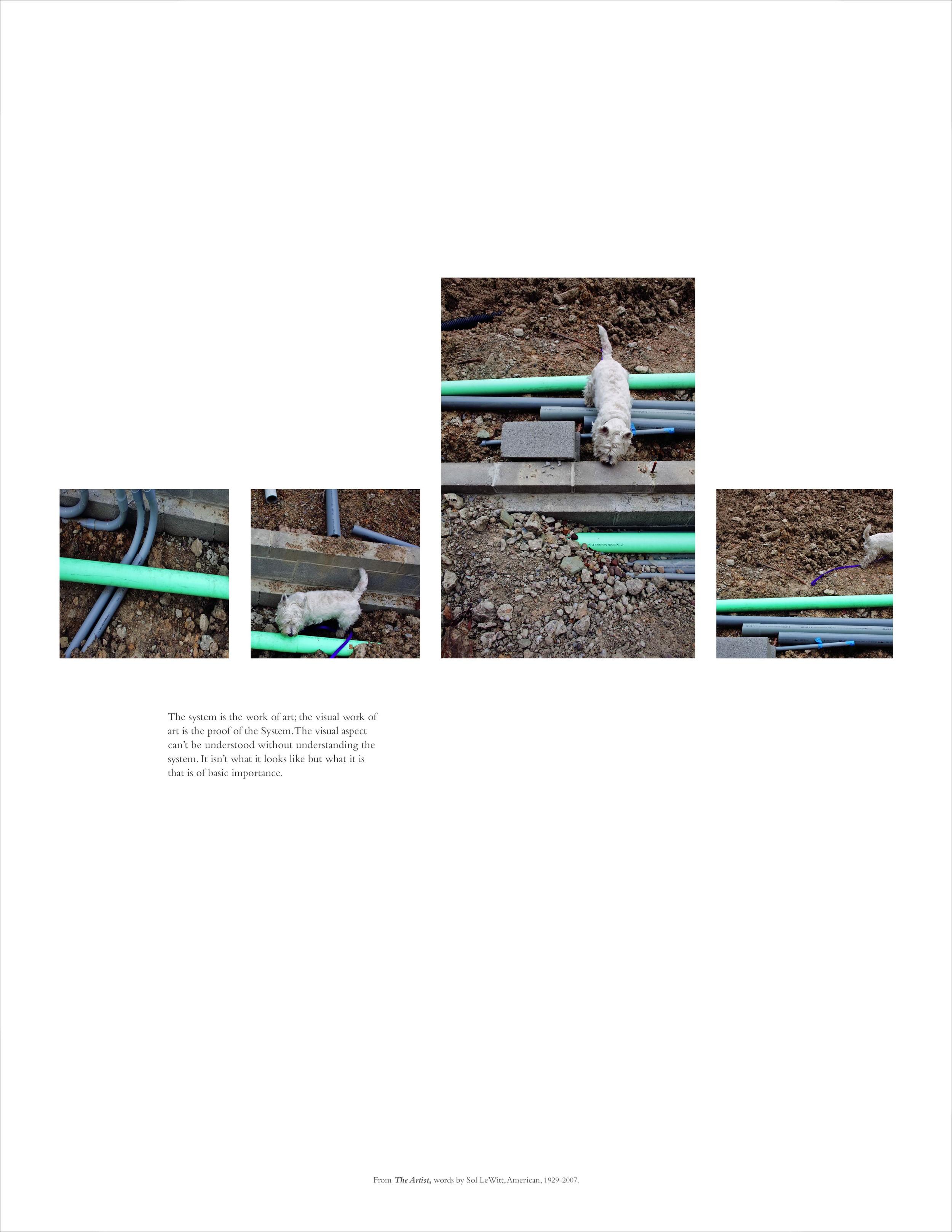 for spot press_prints7.jpg