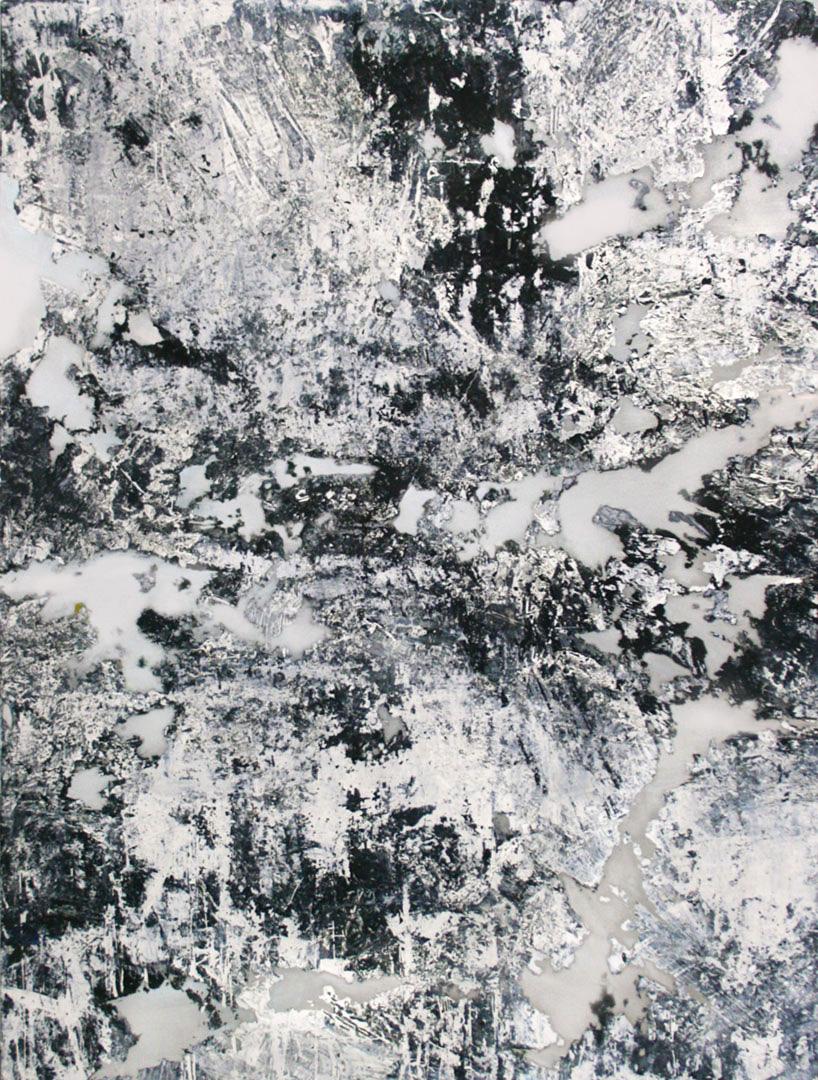 Pruina, 2014    Acrylic on aluminum // 36 x 48 inches