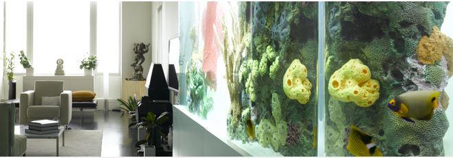Inserts created for City Aquarium in New York