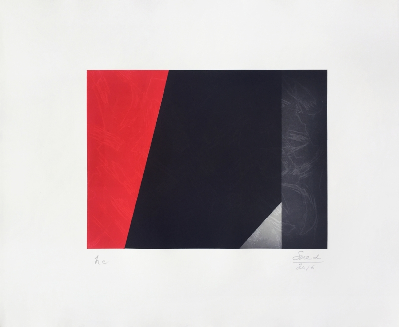 S/ Título | 2015 | Gravura em metal | 40 x 50 cm