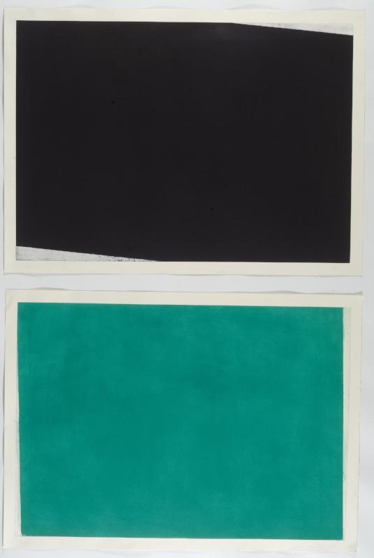 S/ Título | 2010 | DIPTICO: Água tinta, maneira negra, ponta seca | 110 x 150 cm cada
