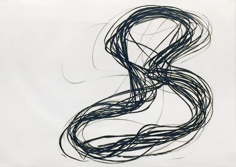 S/ Título da série Voluminosos | 2009 | Bastão a óleo sobre papel | 68 x 98 cm