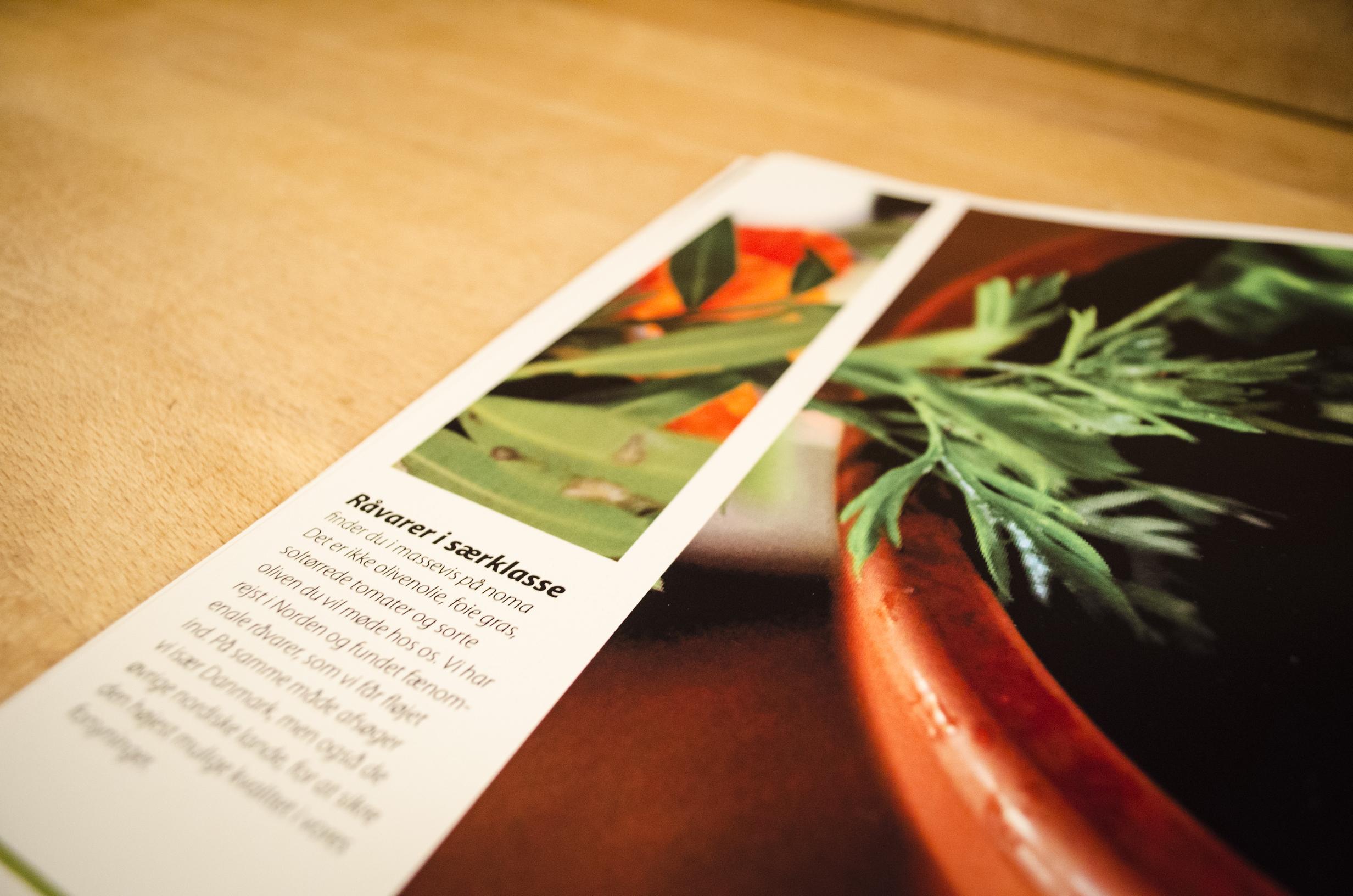 noma brochure 073.jpg