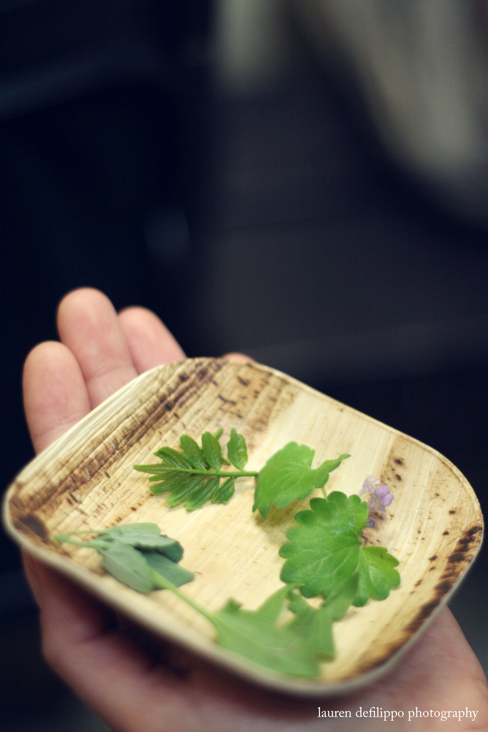 foodbookfair_5