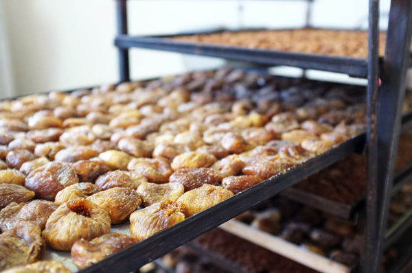 Dehydrated figs at the Maglio chocolate factory — Maglie Lecce