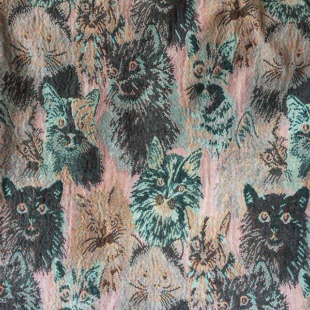 #epic #cat #blanket thank you for bringing this into my world @lislovesholidays #xoxo