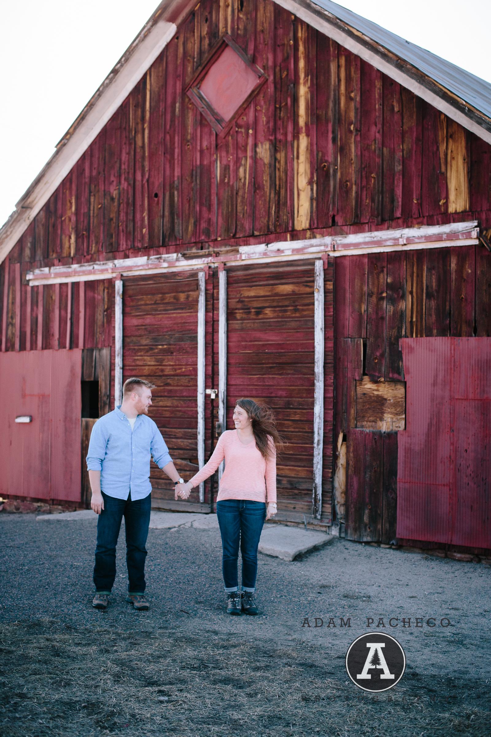 Johnson Engagement-10.jpg