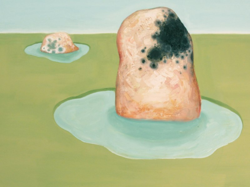 Landscape with mold,  2012, oil and mixed media on canvas, 30 x 40 inches