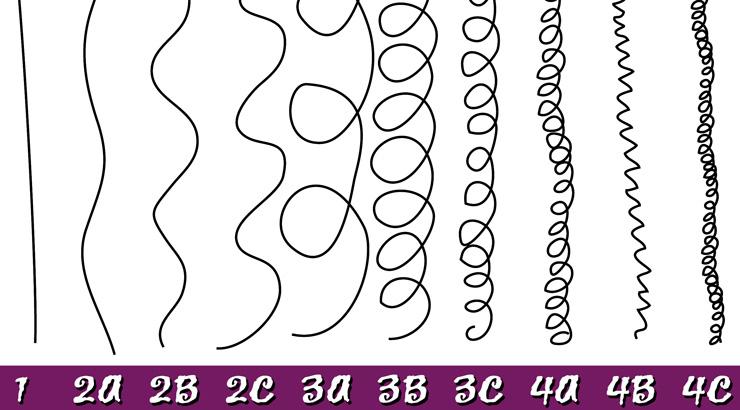 Hair Type System