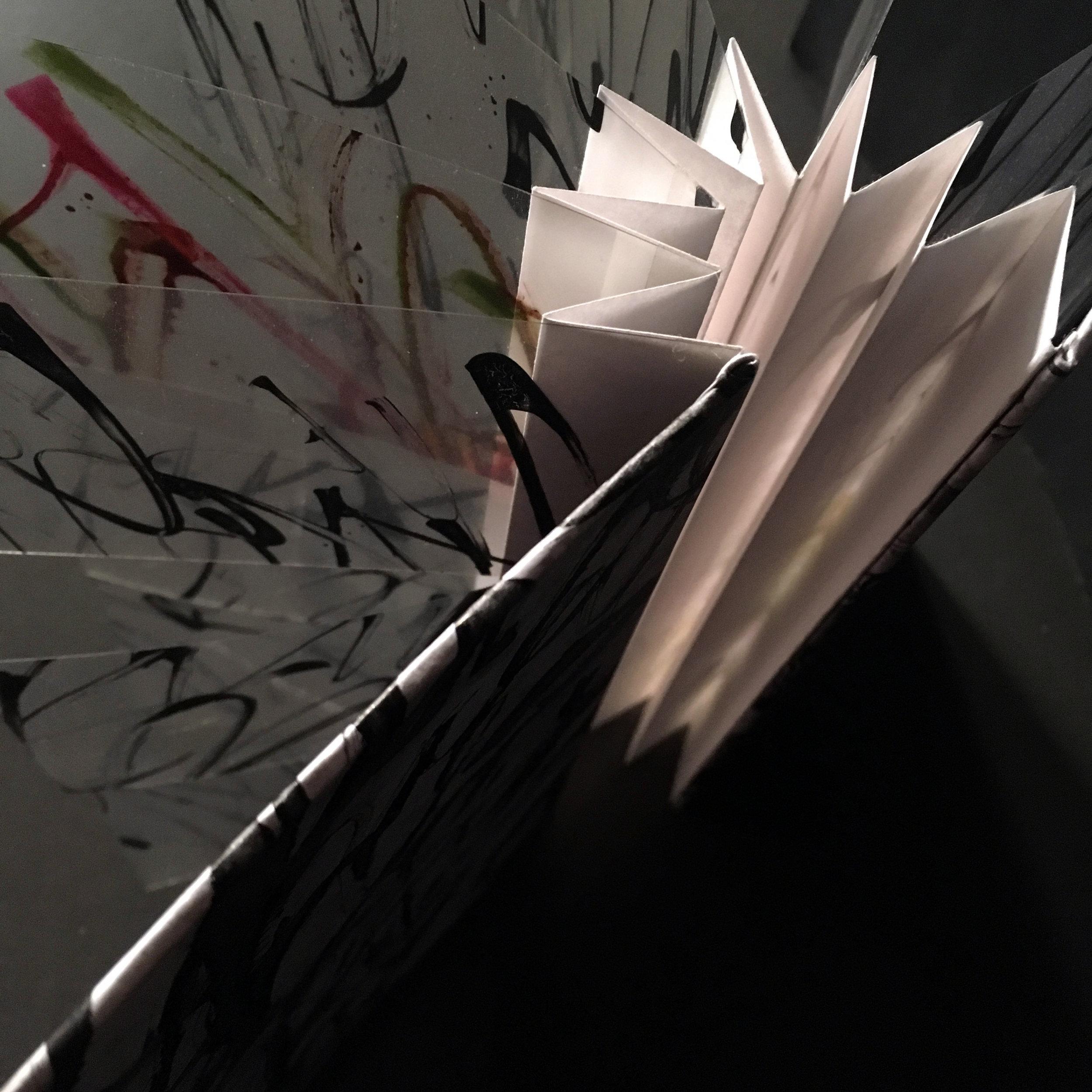 Poetry in Motion2.jpg