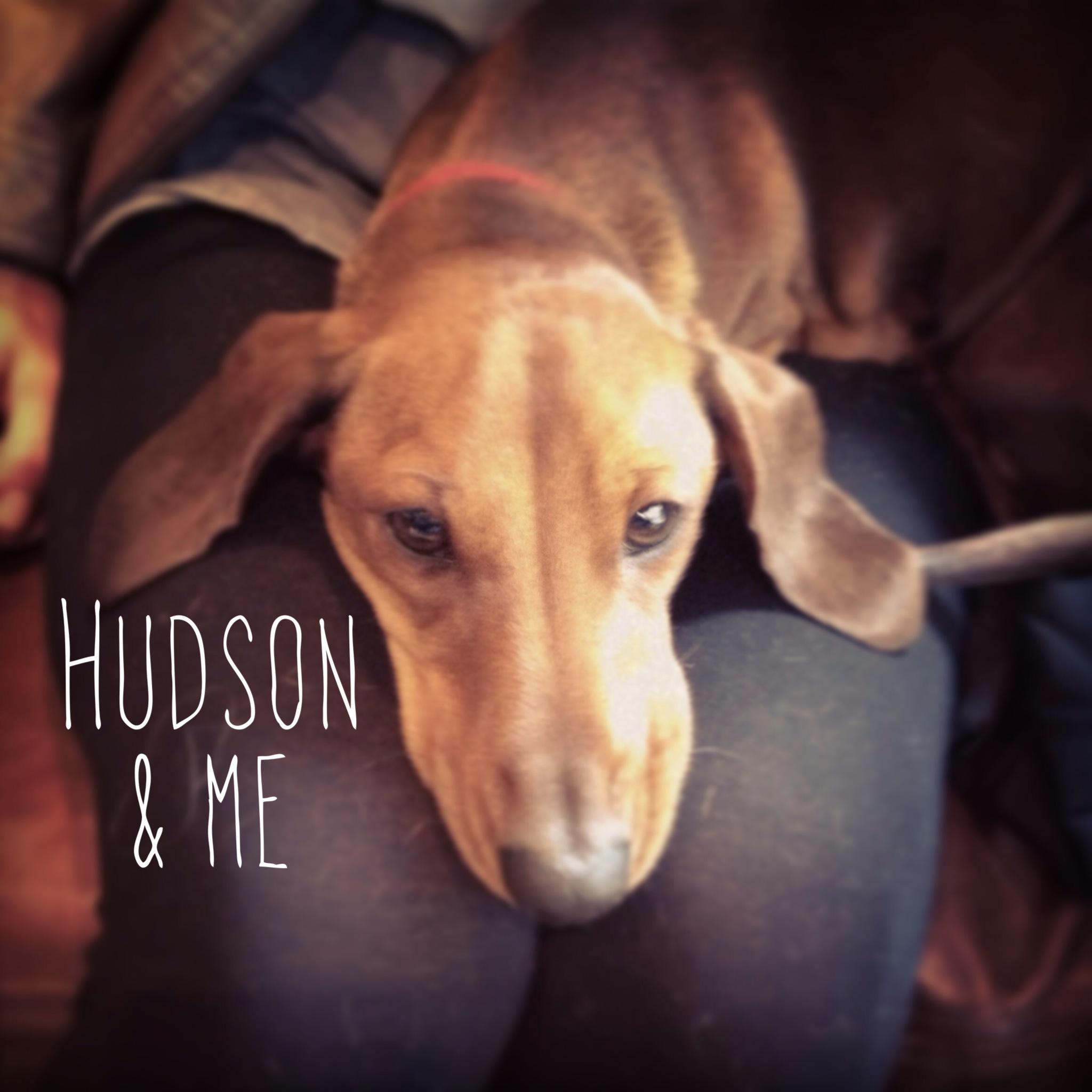 ears hudson writing.JPG